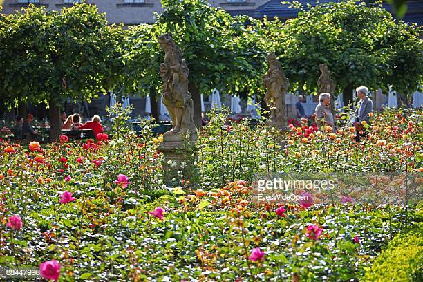 Rose garden of the New Residence on June 11 2009 in Bamberg Germany Bamberg is listed as a World Heritage by UNESCO