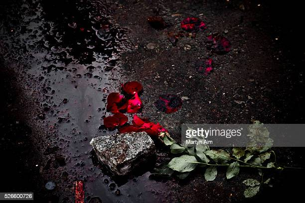 A rose has been placed in a pool of blood to commemorate the deaths of UDD protestors Clashes between Thai Army and UDD Redshirts left a reported 15...