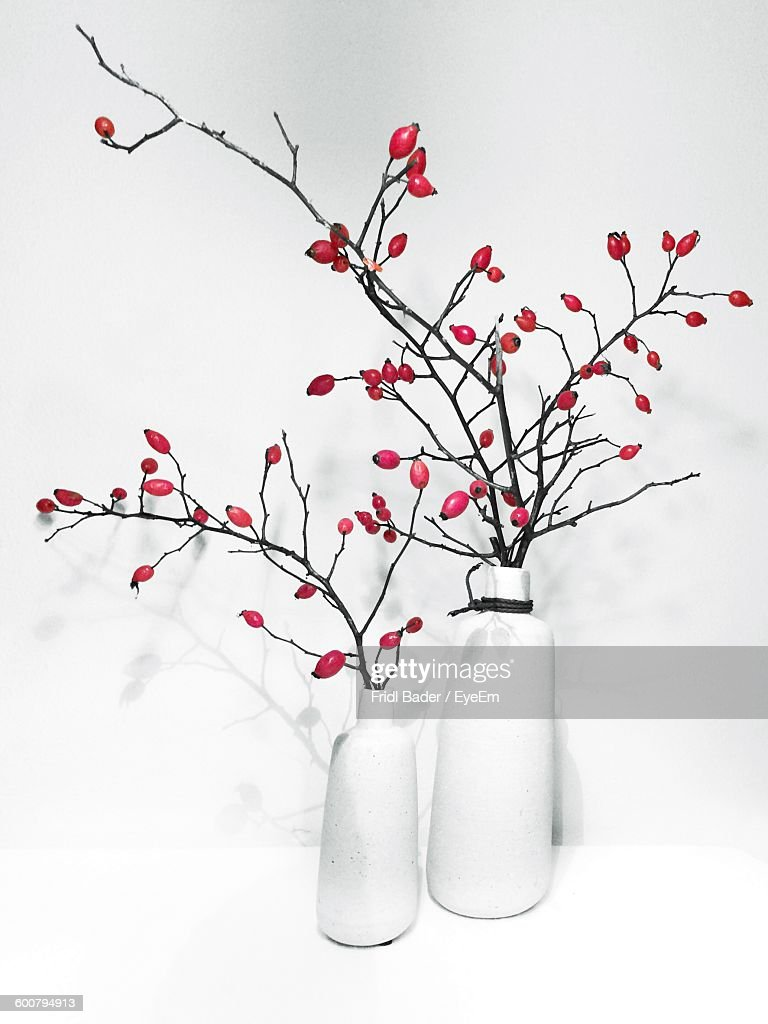 Rose Hips In Vase On Table Against White Wall : Stock-Foto