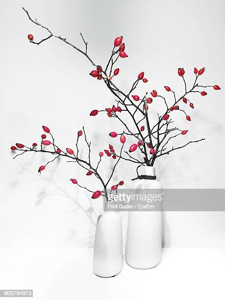 Rose Hips In Vase On Table Against White Wall