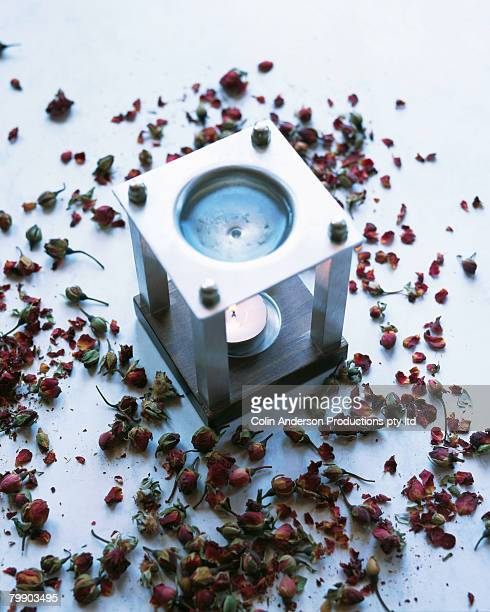 Rose Hips Scattered by an Aromatherapy Burner