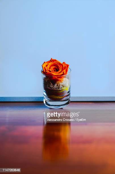 Rose In Jar On Table