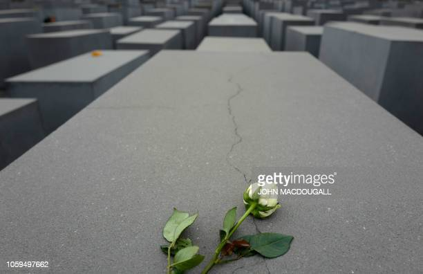 TOPSHOT A rose is laid down on a stele of the Memorial to the Murdered Jews of Europe in Berlin on November 9 the 80th anniversary of the...