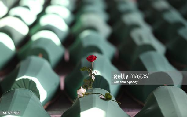 A rose is left on the funeral of the 71 victims of 1995 Srebrenica genocide after a convoy carrying the bodies of the 71 victims of the 1995...