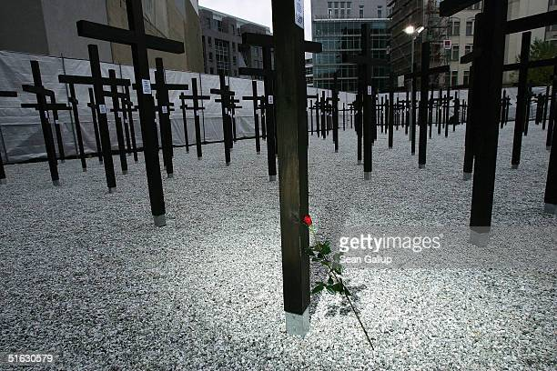A rose lies at the cross commemorating Eberhard Cibis during opening ceremonies of a new memorial of a rebuilt section of the Berlin Wall and crosses...