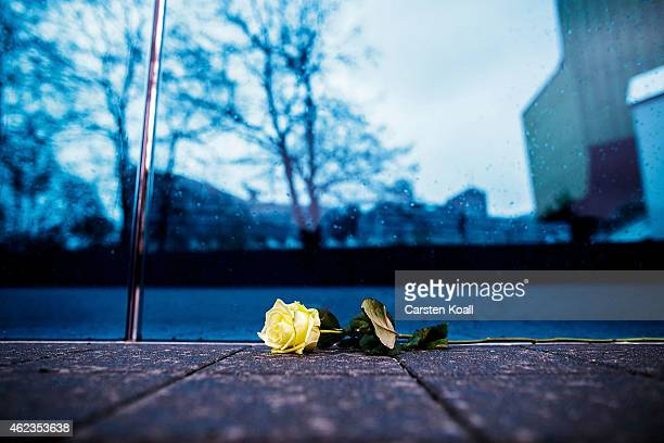 Rose lies at the memorial and information point for the victims of the Holocaust on January 27, 2015 in Berlin, Germany. Thousands of people will...