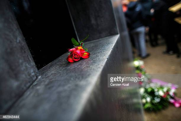 A rose lies in front a on a memorial to the homosexuals persecuted by the Nazis during a memorial ceremony on January 27 2015 in Berlin Germany...