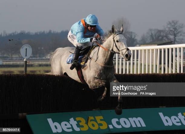 Rose of the Moon ridden by Tony McCoy clears the last to win the Star Sports Cheltenham Preview 3rd March Interactive Handicap Steeple Chase at...