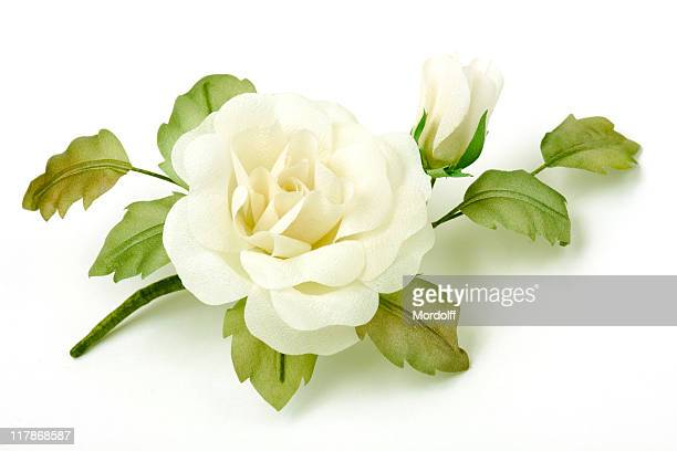 rose on white background - white satin stock photos and pictures