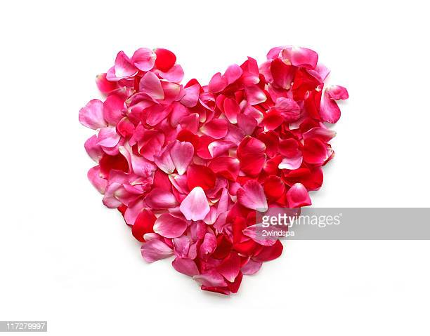 rose petal heart - rose petals stock pictures, royalty-free photos & images