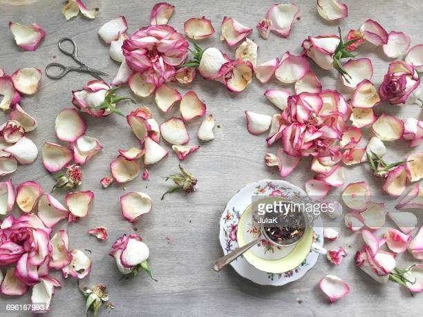 rose petals and a cup of tea - julia rose stock pictures, royalty-free photos & images