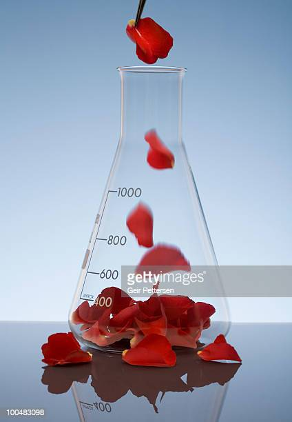 Rose petals falling into large glass beaker