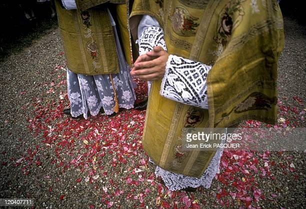 Rose Petals In France In 1987 Rose petals at the feet of priests on the day of Corpus Christia Country Priest Father Quintin Montgomery Wright...