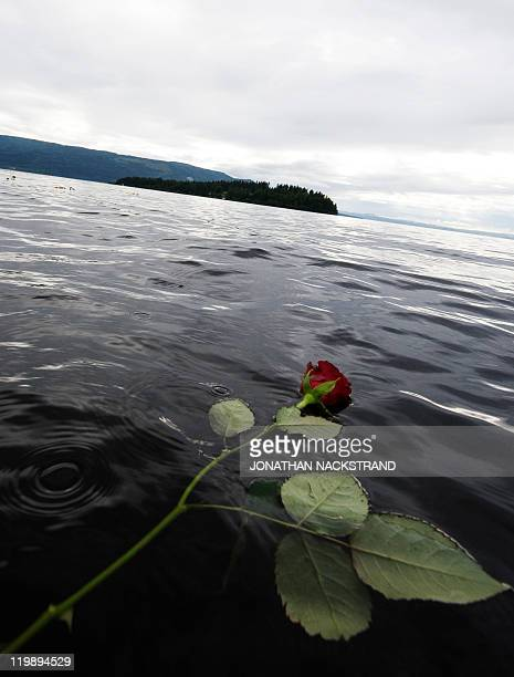 A rose thrown in the lake Tyrifjorden in honor of the victims of the July 22 shooting spree at a Labour Party youth summer camp on the island of...