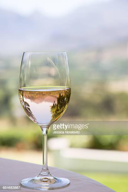 Rose wine in the Cape Winelands