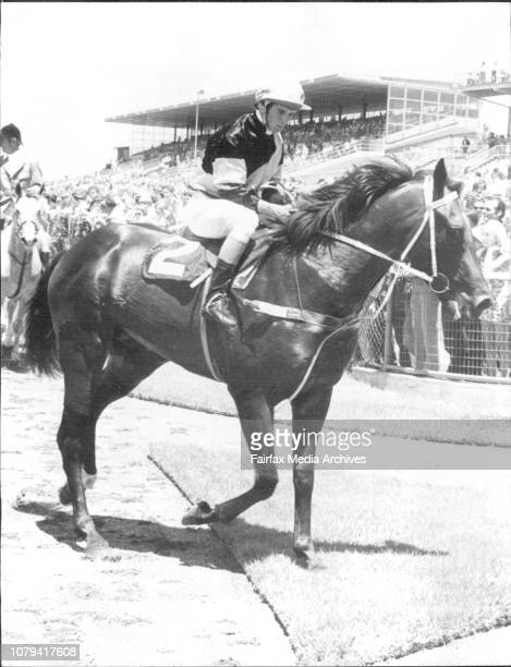 Rosehill Race Meeting Race One Top Charger February 1 1975