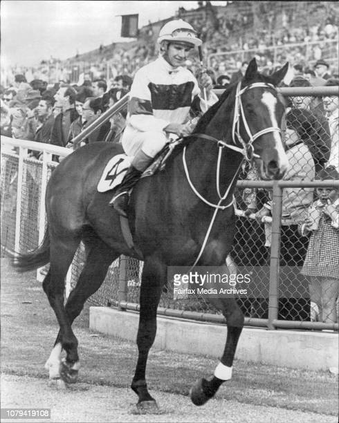 Rosehill races 2 Return to scale Star Ruler after winning the sec and race at Rosehill today June 08 1971