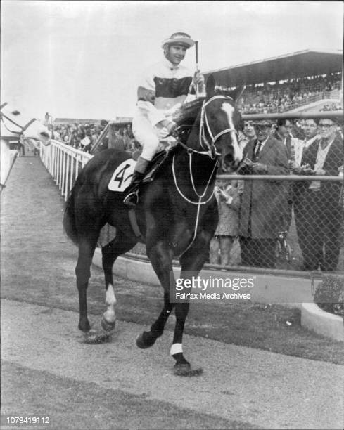 Rosehill races 2 Return to scale Star Ruler after winning the sec and race at Rosehill today June 05 1971