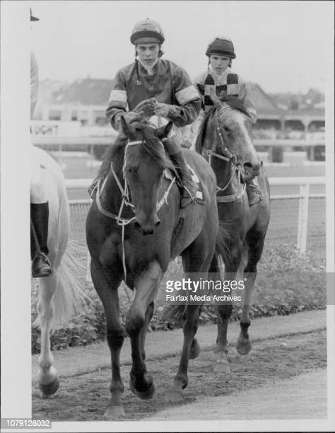 Secretariat Racehorse Stock Photos And Pictures Getty Images