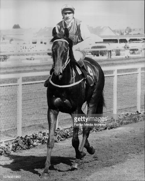 Rosehill Races Return to scale Another Phenomenon'Beaver' Schofield before the race September 10 1983