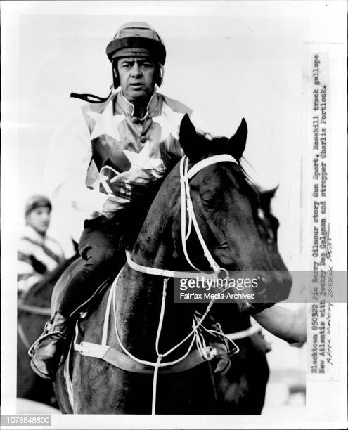 Rosehill Track Gallops New Atlantis With Jockey De Coleman And Strapper Charlie Portlock March 22 1985