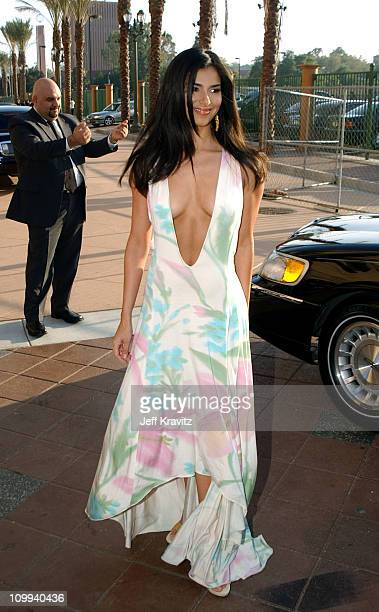 Roselyn Sanchez during 2003 MTV Movie Awards Arrivals at The Shrine Auditorium in Los Angeles California United States