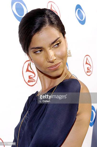 Roselyn Sanchez during The 5th Annual Latin GRAMMY Awards Green Carpet at Shrine Auditorium in Los Angeles California United States