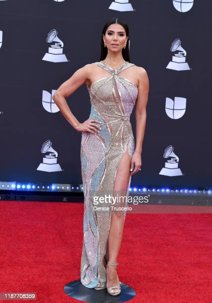 Roselyn Sánchez attends the 20th annual Latin GRAMMY Awards at MGM Grand Garden Arena on November 14, 2019 in Las Vegas, Nevada.