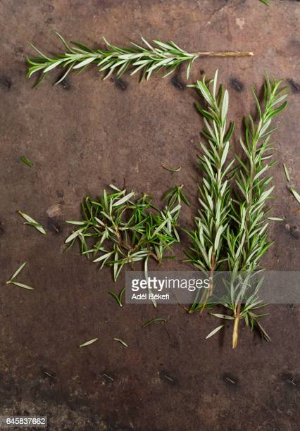 rosemary leaves on brown background
