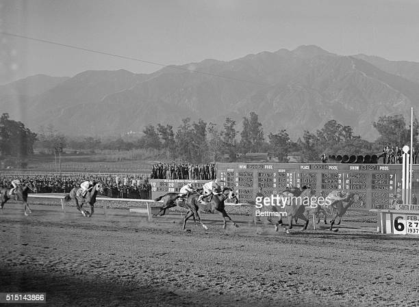 Rosemont Wins Santa Anita Handicap. Photo shows the close finish at Santa Anita, Cal., Feb. 27th, as Rosemont, Foxcatcher Farm entry, nosed out...
