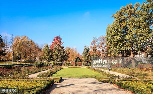rosengarten (rose garden) in autumn season, bern - bern stock pictures, royalty-free photos & images