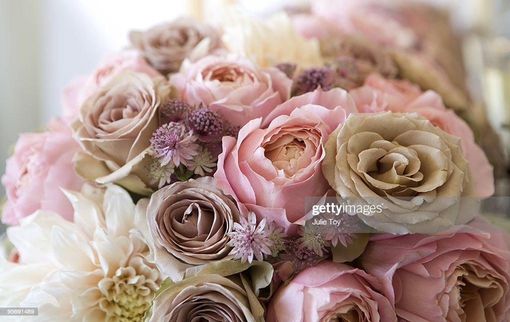 Roses and dahlias : Stock Photo