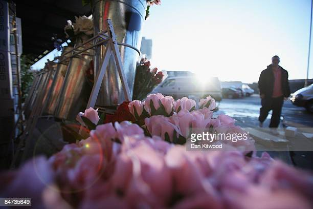 Roses are displayed on a flower stall at New Covent Garden Flower Market on February 11 2009 at London England New Covent Garden Flower Market is...