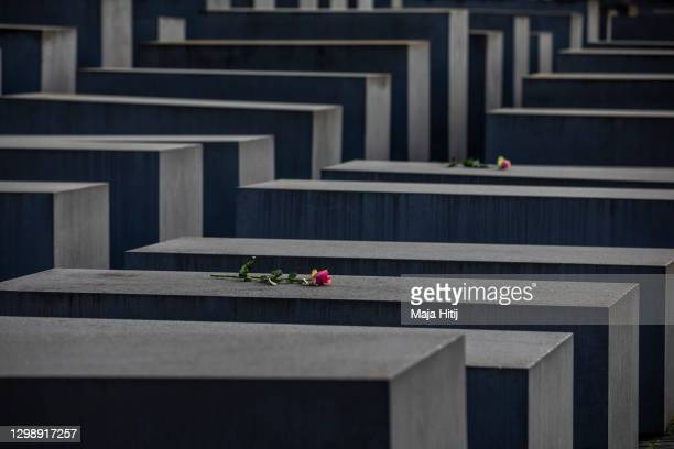 Roses are placed on the Holocaust Memorial on the International Holocaust Remembrance Day on January 27, 2021 in Berlin, Germany. Today marks the...