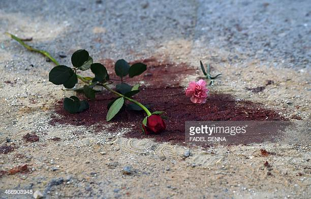 Roses are seen on bloodstains in front of the National Bardo Museum in Tunis on March 19 2015 during a demonstration in solidarity with the victims...