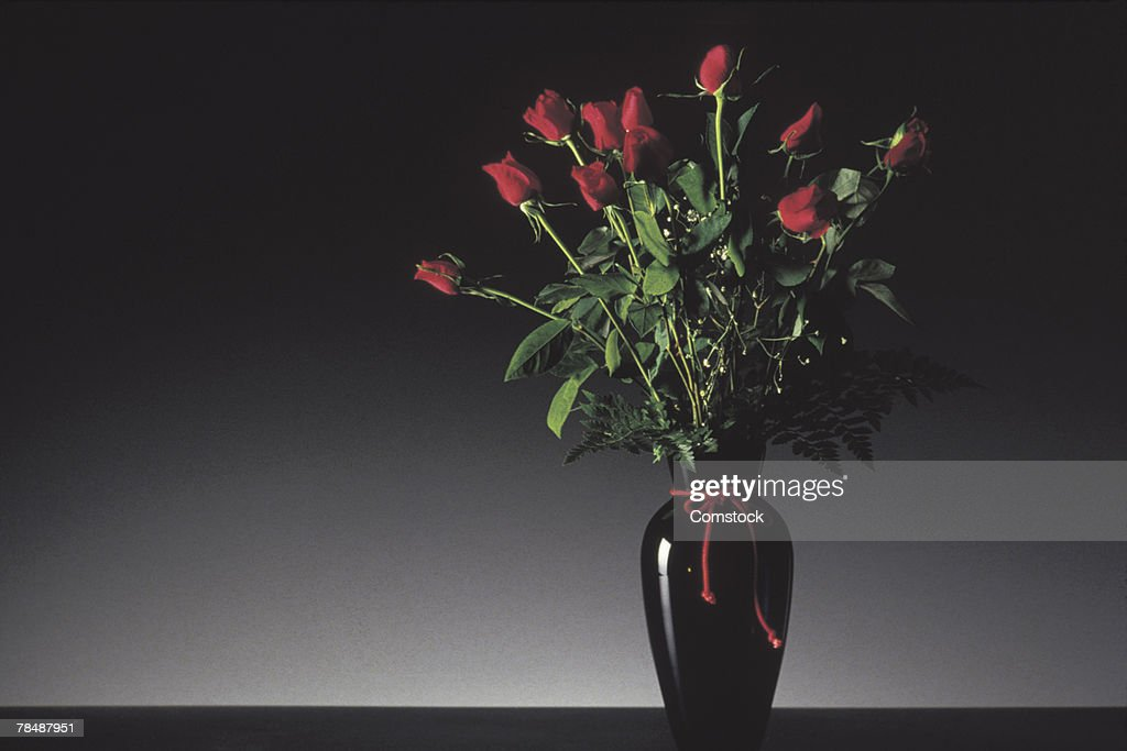 Roses in a vase : Stock Photo
