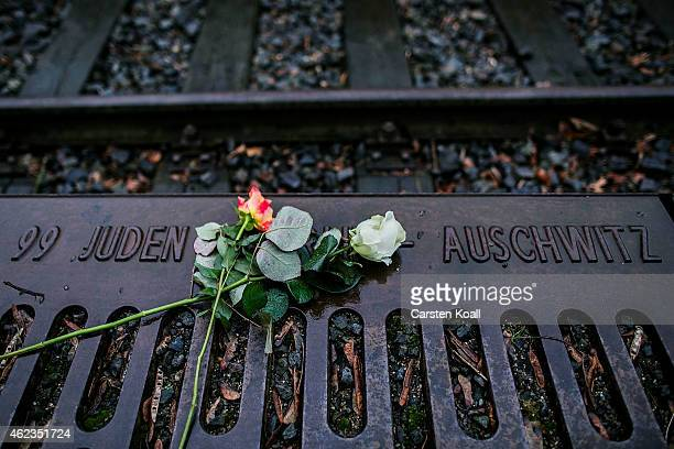 Roses left by mourners lie next to one of the many plaques detailing transports of Berlin Jews to concentration camps at the Gleis 17 on January 27...