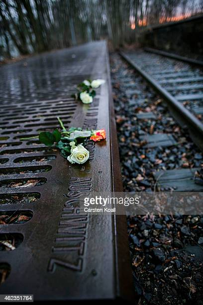 Roses left by mourners lie next to one of the many plaques detailing transports of Berlin Jews to concentration camps at the Gleis 17 on January 27,...
