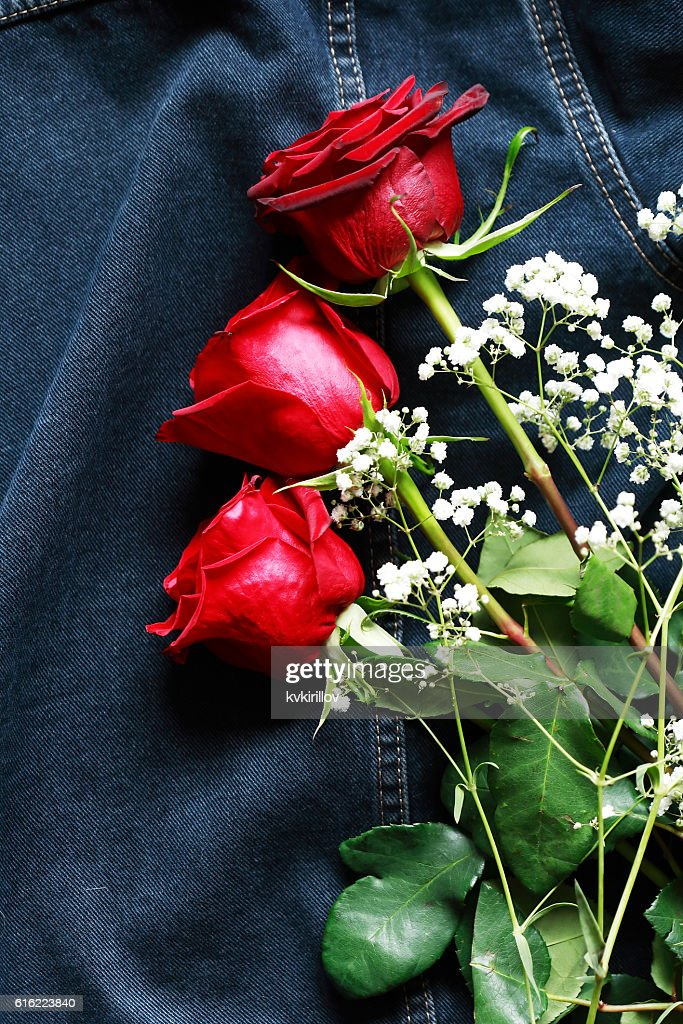 Roses On Denim : Stock Photo