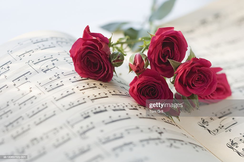 Roses On Sheet Music Stock Photo | Getty Images