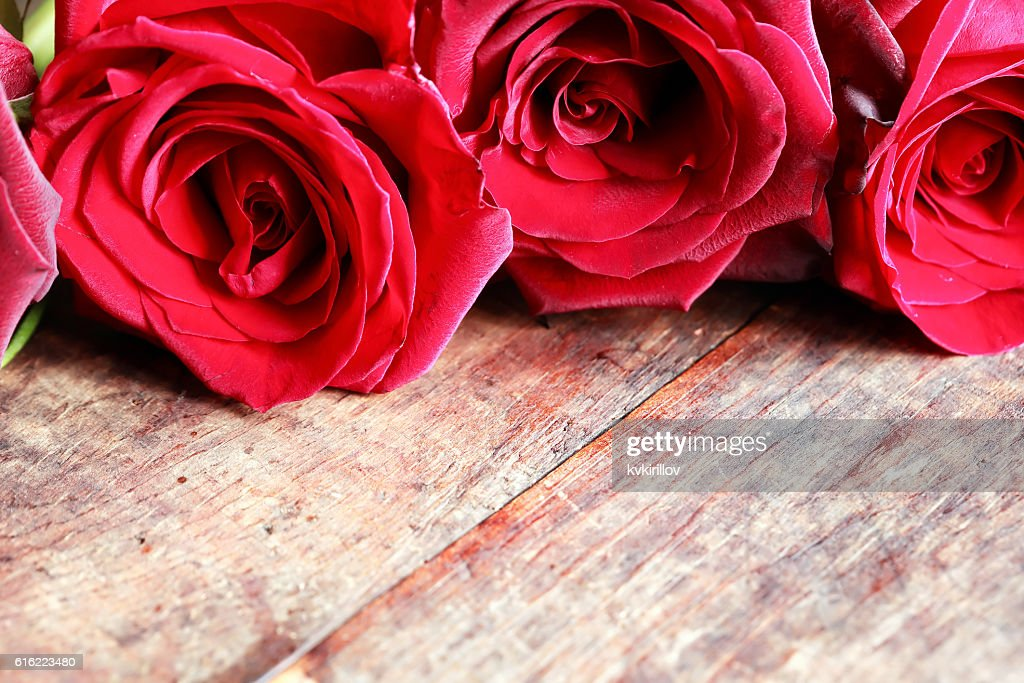 Roses On Wood : Stock Photo