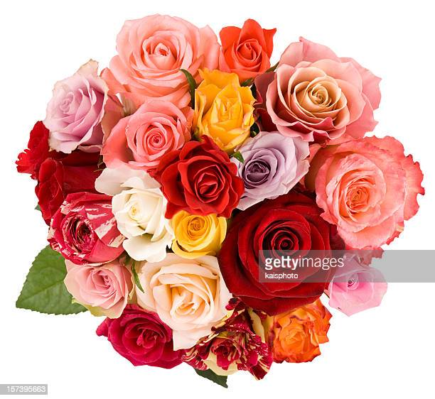 roses - high section stock pictures, royalty-free photos & images
