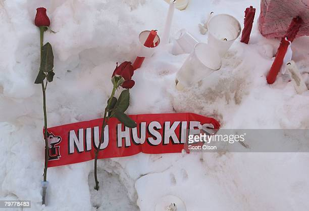 Roses rest in the snow outside the student center on the campus of Northern Illinois University following yesterday's shooting at Cole Hall February...