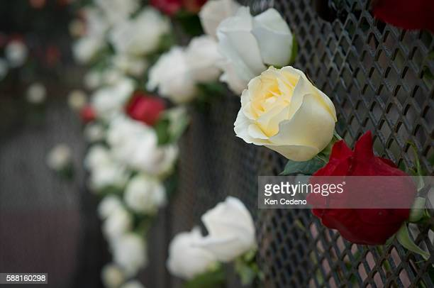 Roses, signifying unborn children, in the fence surrounding the Pepsi center just prior to the start of the Democratic National Convention in Denver.