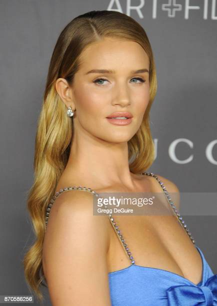 Rosie HuntingtonWhiteley arrives at the 2017 LACMA Art Film Gala honoring Mark Bradford and George Lucas at LACMA on November 4 2017 in Los Angeles...