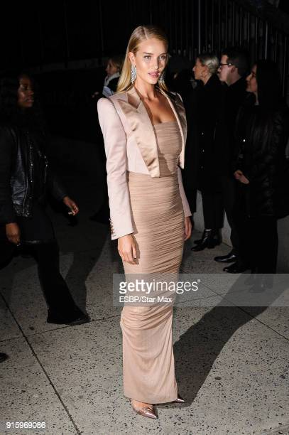 Rosie HuntingtonWhiteley is seen on February 8 2018 in New York City