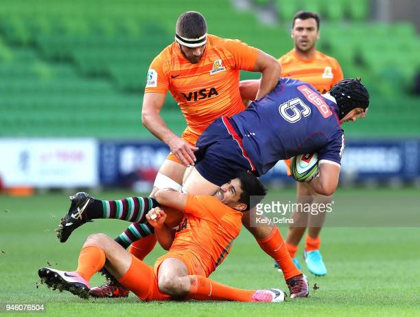 Ross HaylettPetty of the Rebels during the round nine Super Rugby match between the Rebels and the Jaguares at AAMI Park on April 14 2018 in...