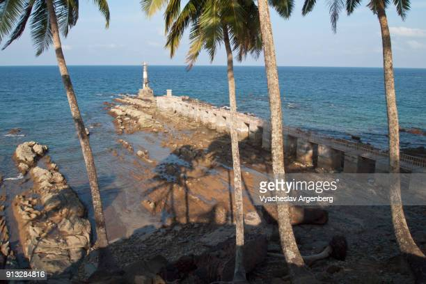 ross island penal colony harbor, palm trees, south andaman islands, india - palm harbor stock-fotos und bilder