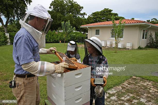 Ross Toyne with his children Kai and Nina both 10 check on a bee hive in their backyard in Coral Gables Fla on Thursday Sept 4 2014
