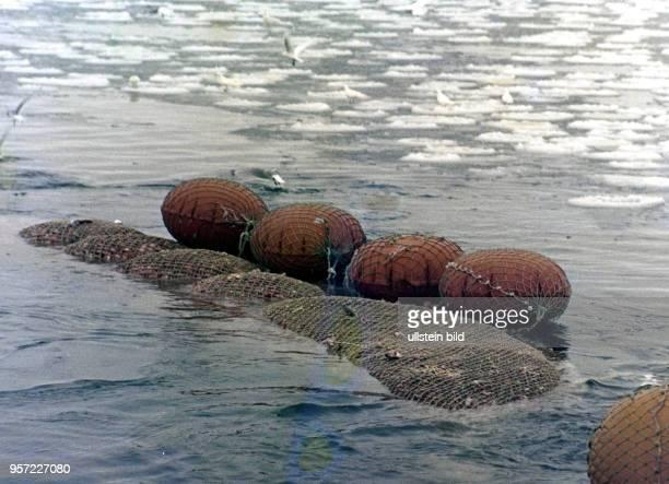Rostock / Fischfang / Hochseefischerei / Februar 1977 / Zubringer Trawler Philipp Mueller auf Fischfang im Nordwestatlantik bei Labrador...